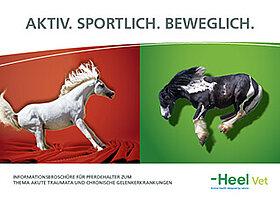 Informationen zum Thema akute Traumata und chronische Gelenkerkrankungen beim Pferd.