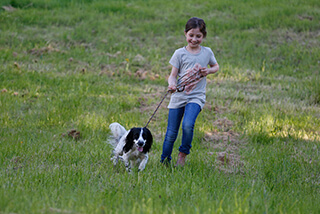 Kind mit Hund auf einer Wiese.