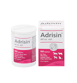 Adrisin<sup>&reg;</sup> ad us. vet. Tabletten