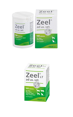 zeel vetepedia 100er pack