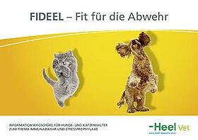 Immunabwehr und Stressprophylaxe von Hunden und Katzen.