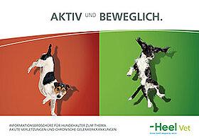 aktiv sportlich broschüre für tierhalter hund traumeel zeel vetepedia