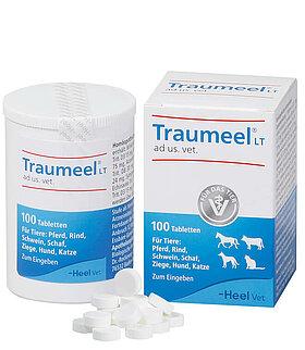 Traumeel LT ad us. vet. Tabletten zum Einnehmen