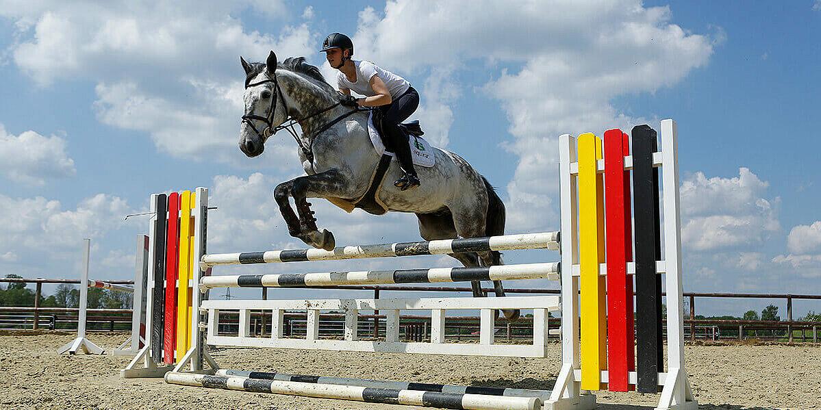 Sprung eines Pferdes beim Wettbewerb.
