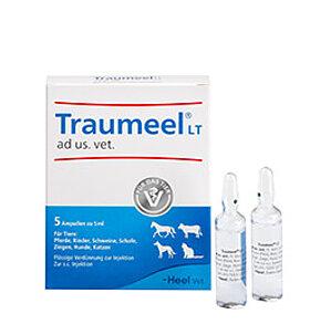 Traumeel LT ad us. vet. Ampullen zur Injektion