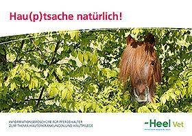 Hauterkrankungen und Hautpflege von Pferden.