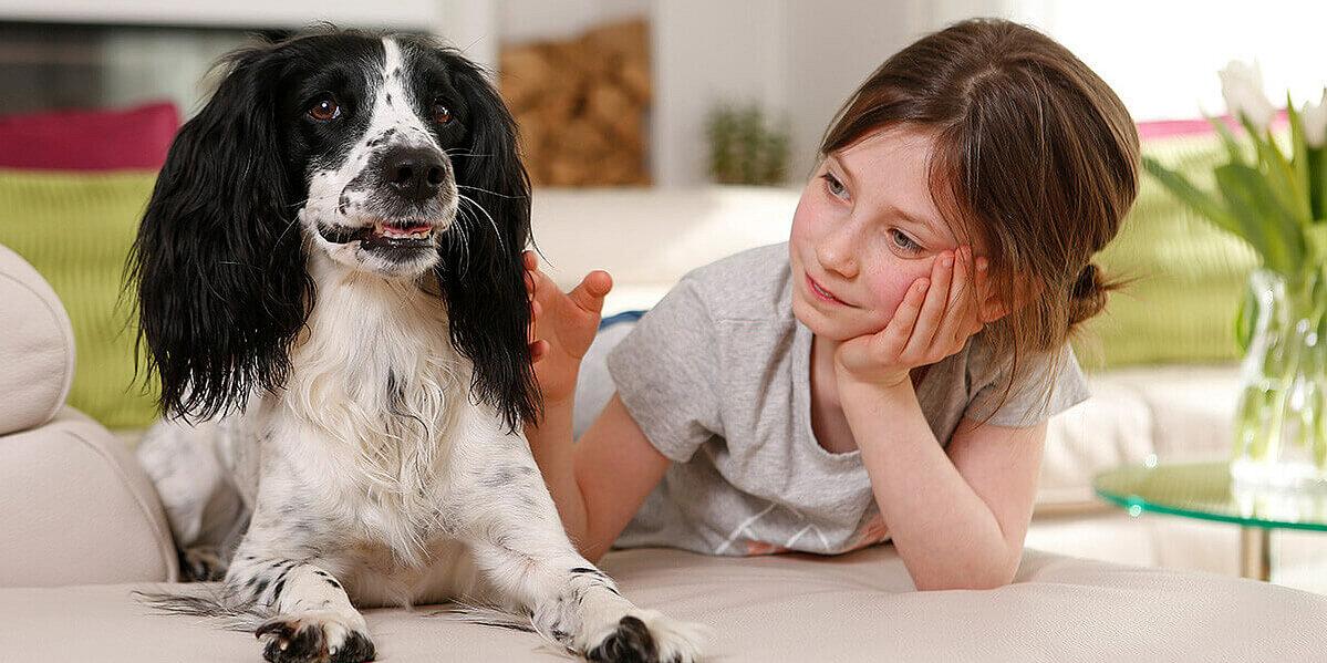 Kind pflegt den Hund.