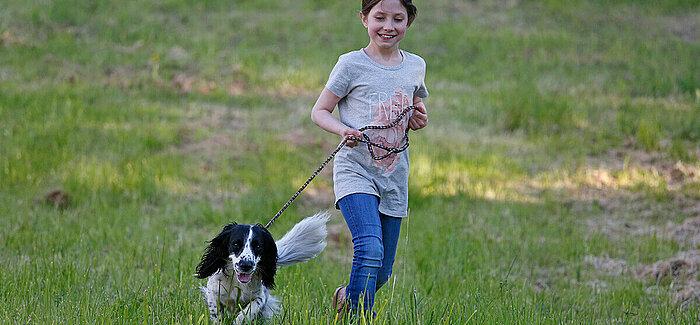 Tipps für gesunde Hundegelenke