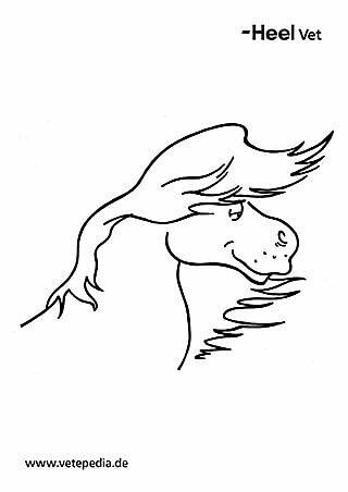 Malvorlage Pferd mit Mähne