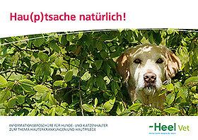 Hauterkrankungen und Hautpflege von Hunden und Katzen.