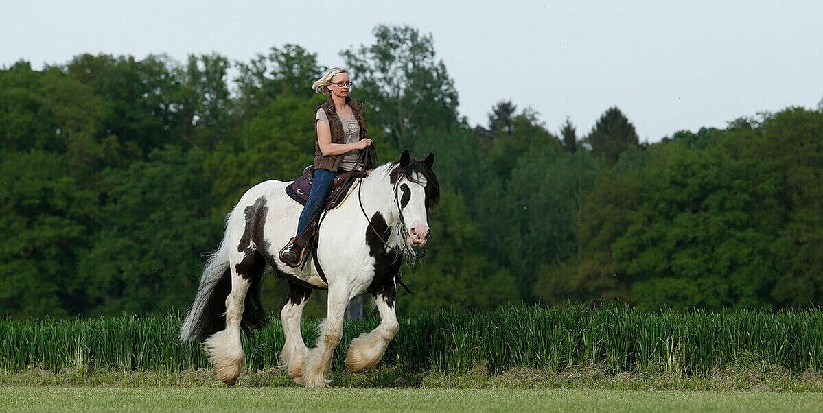 Ausritt mit einem Pferd in der Natur.