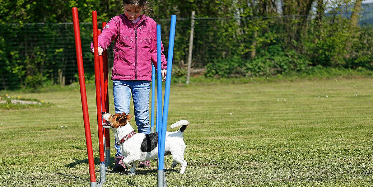 Mädchen motiviert Hund beim Training