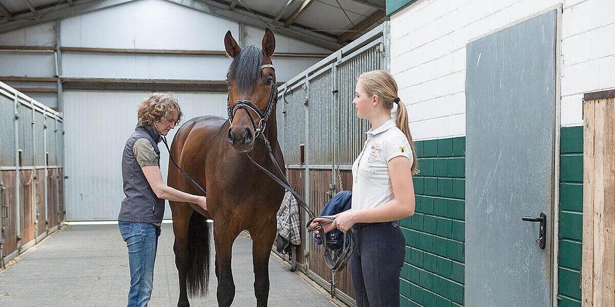 Zwei Reiterinnen mit einem Pferd im Stall.