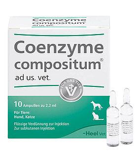 coenzyme ampullen 10er pack
