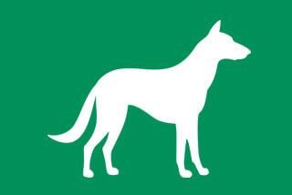 Silhouette Hund
