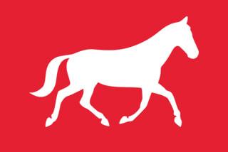 Silhouette Pferd