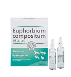 Euphorbium compositum ad us. vet. Ampullen