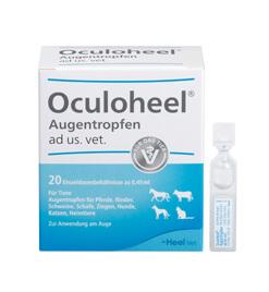 Oculoheel&lt;sup&gt;<sup>&reg;</sup>&lt;/sup&gt; Augentropfen ad us. vet. Einzeldosisbehältnis