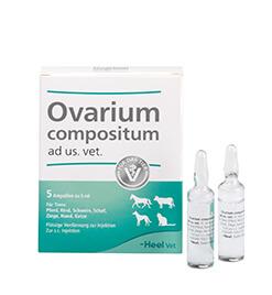 Ovarium compositum ad us. vet. Ampullen
