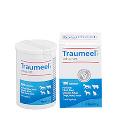 Traumeel® T ad us. vet. Tabletten