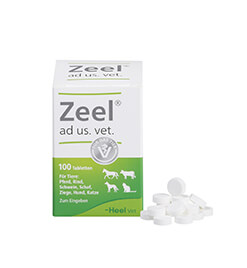 Zeel&lt;sup&gt;<sup>&reg;</sup>&lt;/sup&gt; ad us. vet. Tabletten